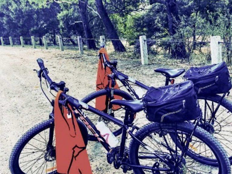 cycle set up