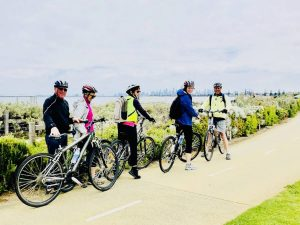 group cycling tour of melbourne bayside