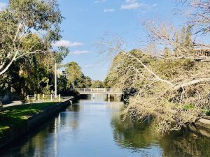 view of elwood canal in melbourne victoria