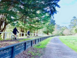 cycling along the old railway station on the warburton rail trail